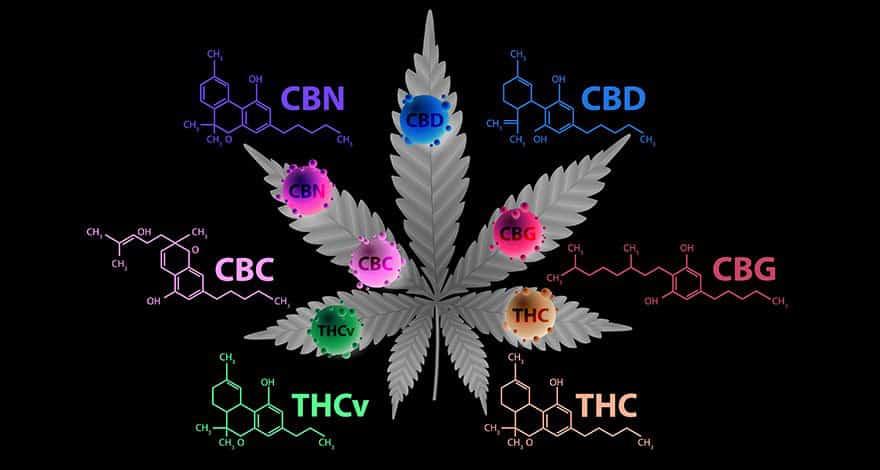 matières actives fleur cbg